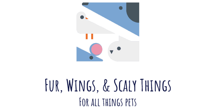 Fur, Wings, & Scaly Things