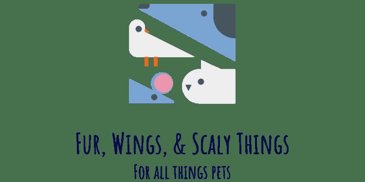 Fur, Wings, & Scaly Things